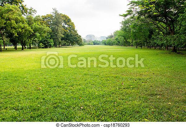 green grass field in big city park - csp18760293