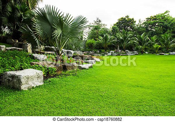 green grass field in park - csp18760882
