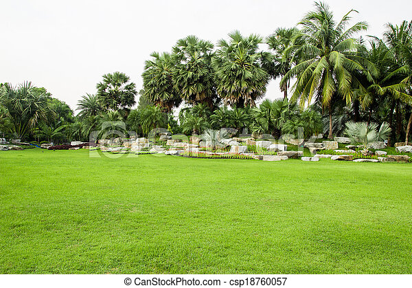 green grass field in park - csp18760057