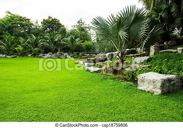 green grass field in park - csp18759806