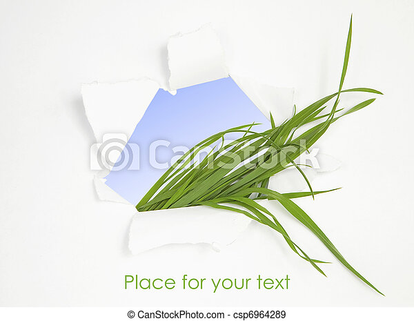 Green grass in abstract window. Spring background - csp6964289
