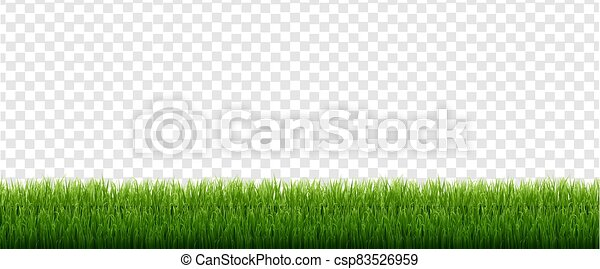 Green Grass Isolated Transparent Background - csp83526959