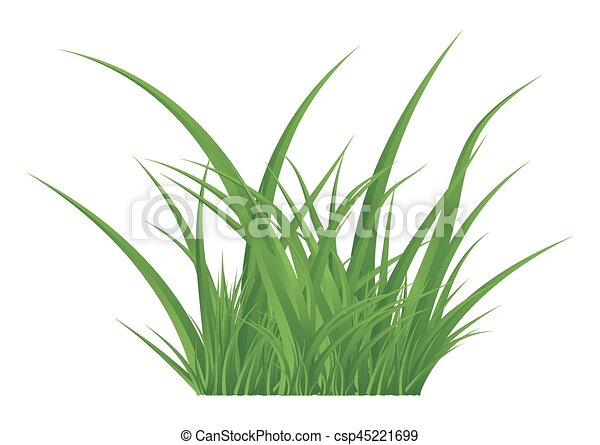 Line Drawing Grass : Green grass isolated vector symbol icon design beautiful eps