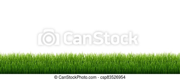 Green Grass Isolated White Background - csp83526954