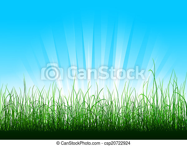 Green Grass Over Blue Sky With Sunbeams