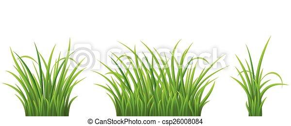 Green grass set - csp26008084