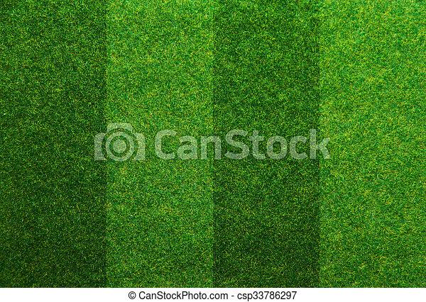 green grass soccer field. Delighful Field Green Grass Soccer Field Background  Csp33786297 In Grass Soccer Field
