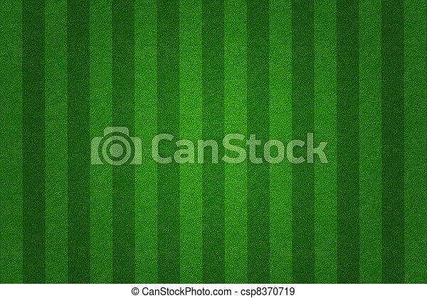 green grass soccer  field background - csp8370719