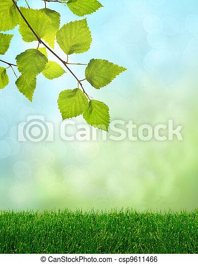 Green grass spring fantasy - csp9611466