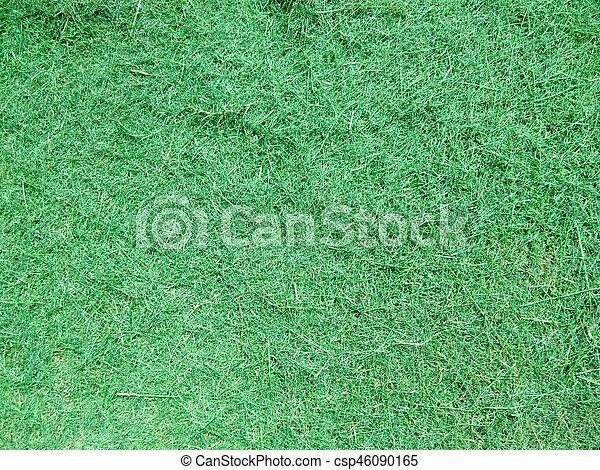 green grass - csp46090165