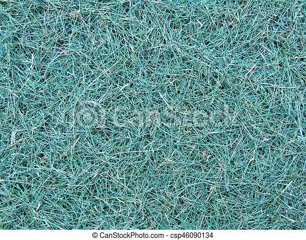 green grass - csp46090134