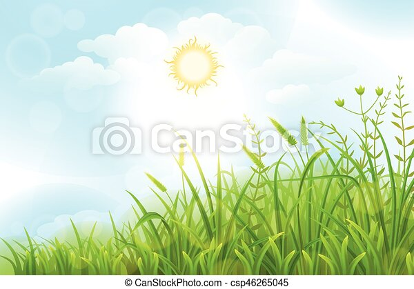 Green grass vector background - csp46265045