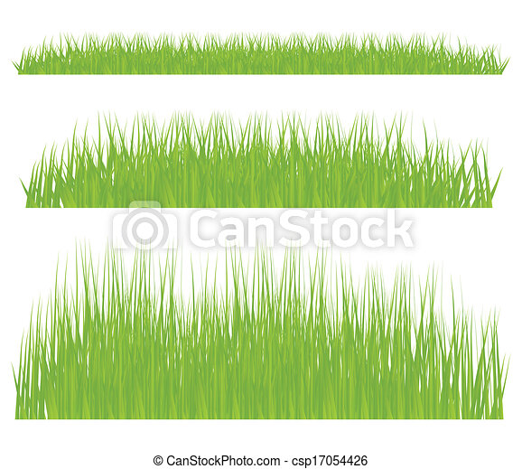 Green grass vector background - csp17054426