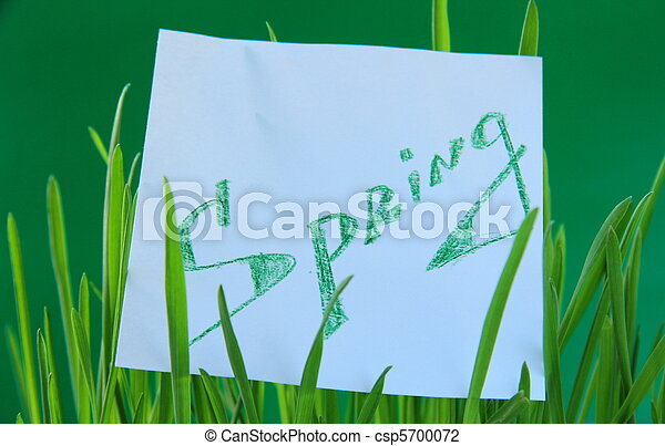 Green grass with a sticker spring csp5700072