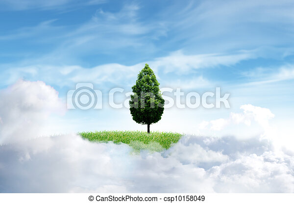 Green grass with tree and cloud sky background - csp10158049