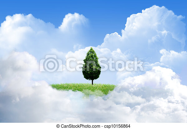 Green grass with tree and cloud sky background - csp10156864