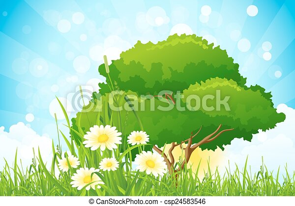 Green Grass with Tree - csp24583546