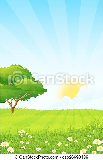 Green Grass with Tree - csp26690139