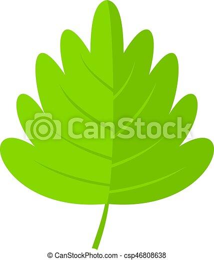 green hawthorn leaf icon isolated green hawthorn leaf icon rh canstockphoto com leaf vector image leaf vector logo