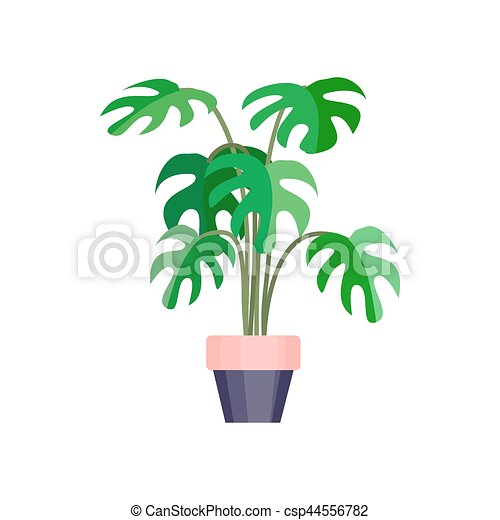 Green house plant in pot. Leaf flower flat. Vector. on portola valley houses, pleasant hill houses, arroyo grande houses, mendocino houses, buena park houses, barstow houses, hughson houses, ladera ranch houses, twentynine palms houses, wildomar houses, coachella valley houses, lost hills houses, trona houses, fountain valley houses, canoga park houses, prather houses, sanger houses, salinas houses, los osos houses, sonoma county houses,