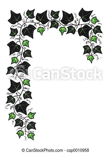 Green Ivy Border - csp0010958