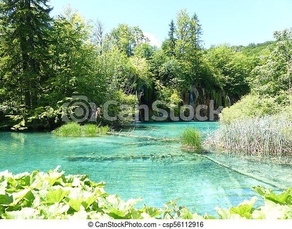 Green lake - csp56112916