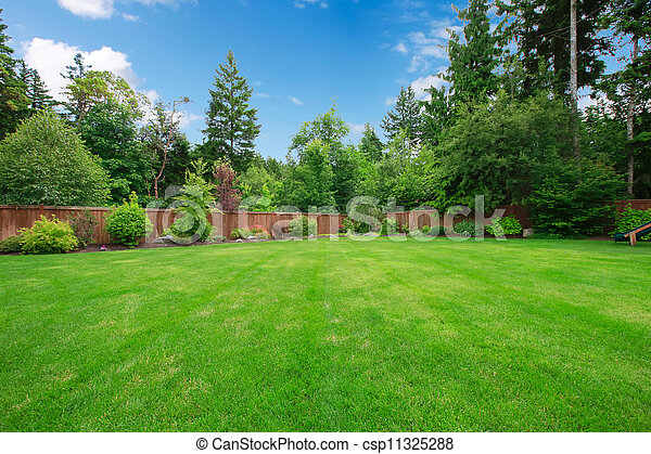 Green large fenced backyard with trees. - csp11325288