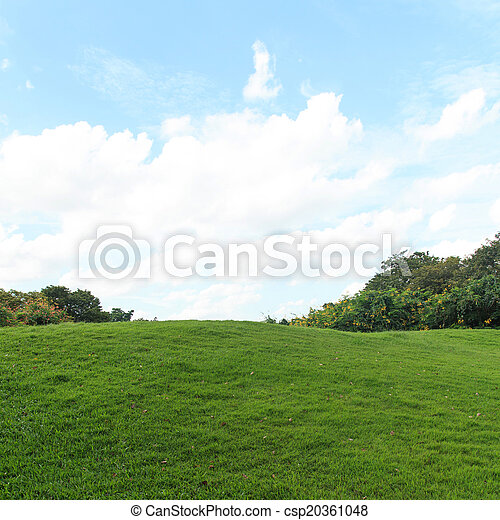 Green lawn and trees in the park - csp20361048