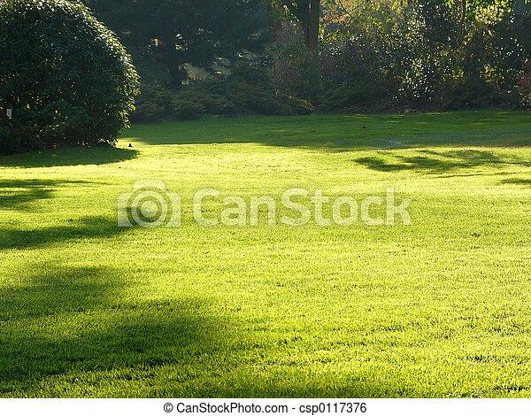 green lawn - csp0117376