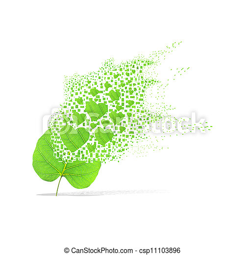 Green leaf of heart on white background - csp11103896