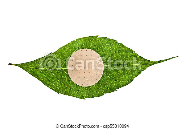 Green leaf with adhesive plaster isolated on white background - csp55310094