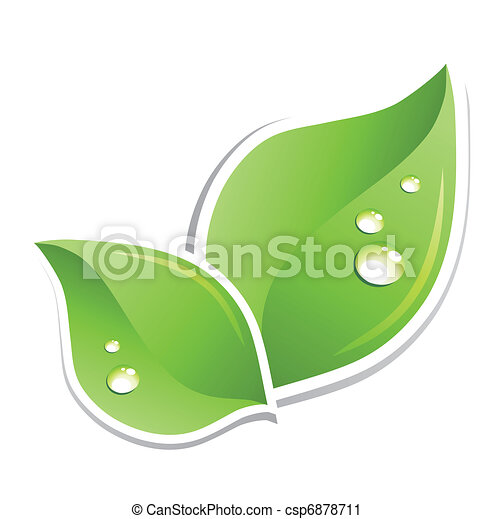 Green leaf with water droplets. Vector - csp6878711