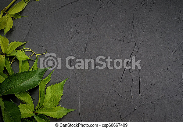 Green leaves frame on black plaster background - csp60667409