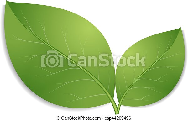 green leaves icon - csp44209496