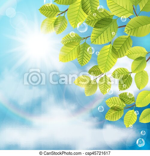Green leaves on sky background - csp45721617
