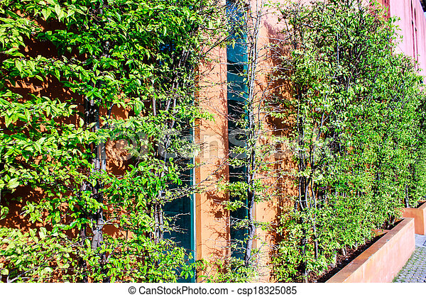 green leaves on wall - csp18325085