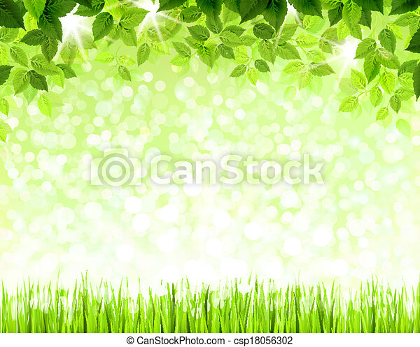 green leaves  - csp18056302