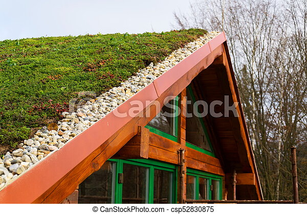 Green Living Sod Roof With Grass On Wooden Building