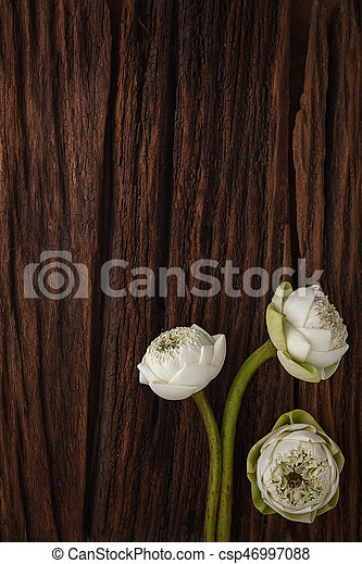 Green Lotus Flower Decoration On Wooden Background Beautiful Flat