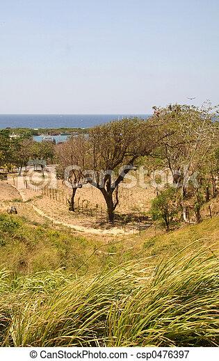 Green Meadow Along Coastline - csp0476397