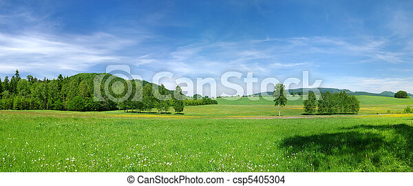 Green meadow and blue sky during the spring - csp5405304