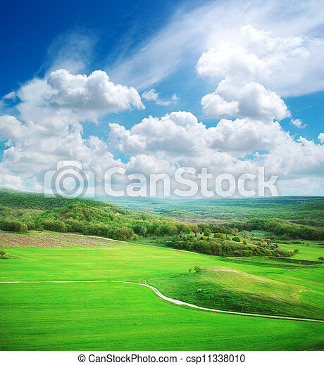 Green meadow in mountain - csp11338010