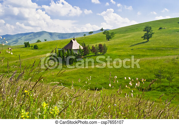 Green meadow in mountain - csp7655107