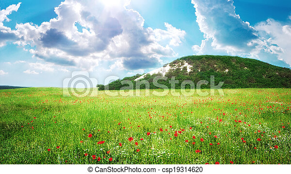 Green meadow in mountain - csp19314620