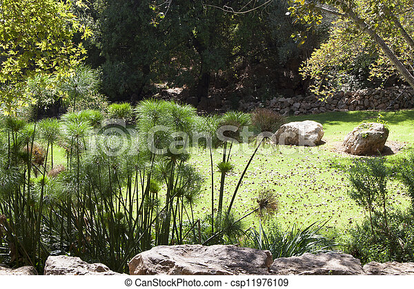 green meadow in the garden of the the Jerusalem Biblical Zoo - csp11976109