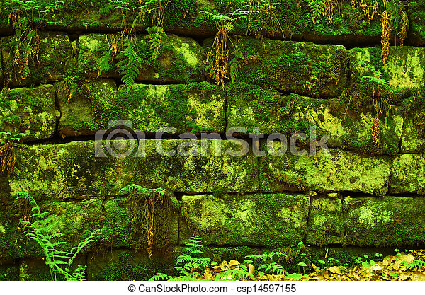 Green mossy wall background - csp14597155