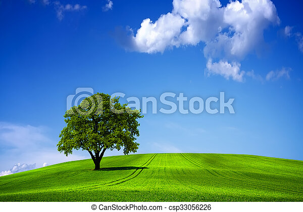 Green nature landscape and blue sky - csp33056226