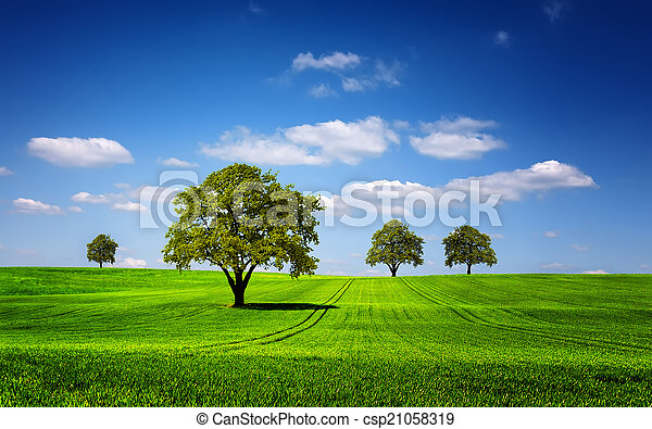 Green nature landscape - csp21058319