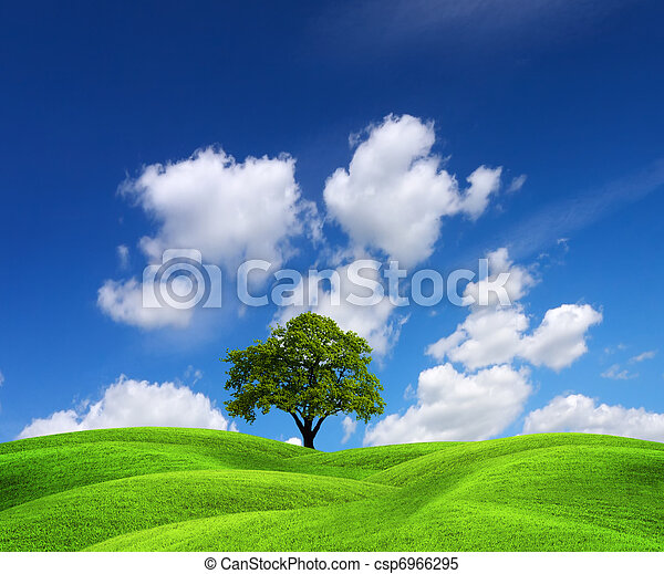 Green nature landscape - csp6966295