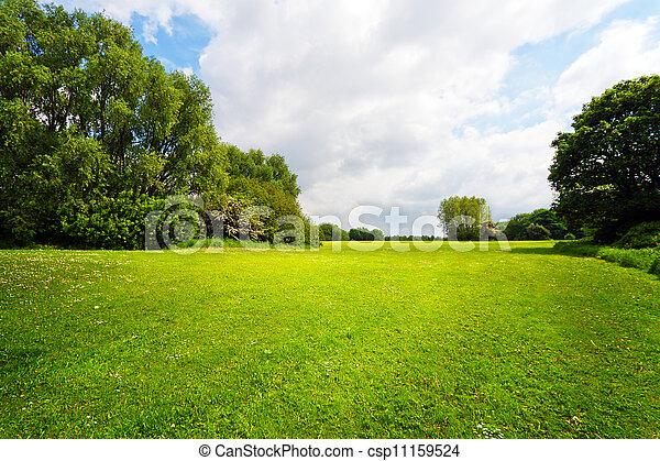 Green nature landscape - csp11159524